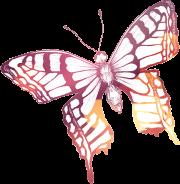 PIF-sommerfulgl-farve-drejet