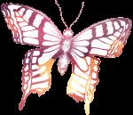 PIF-sommerfulgl-farve-transp